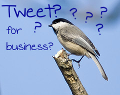 Image Representing Using Twitter for Business