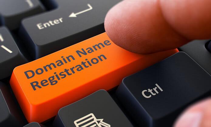 do you own your domain name
